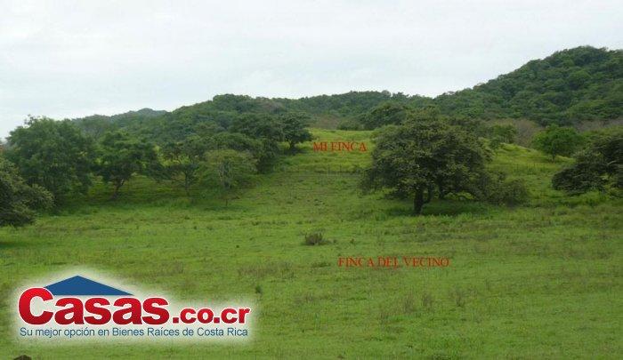 Properties in Costa Rica